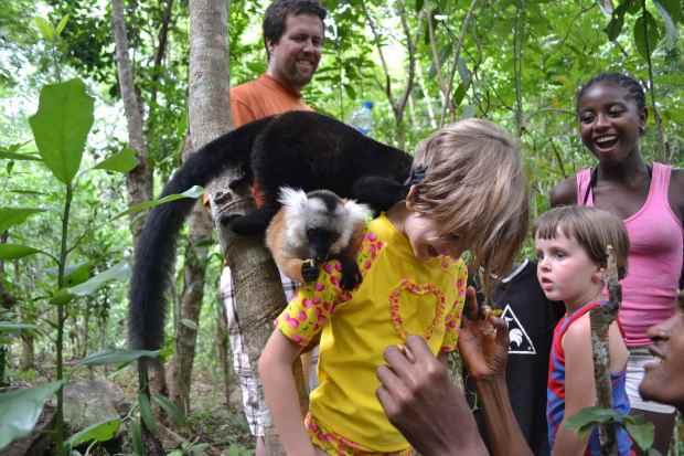 More Lemurs!!!!