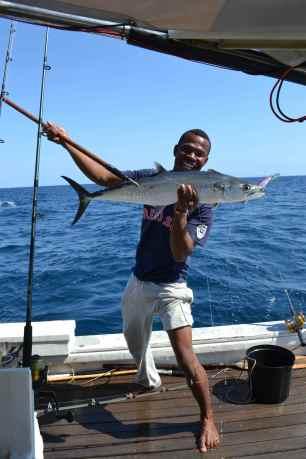 dada 1st fish