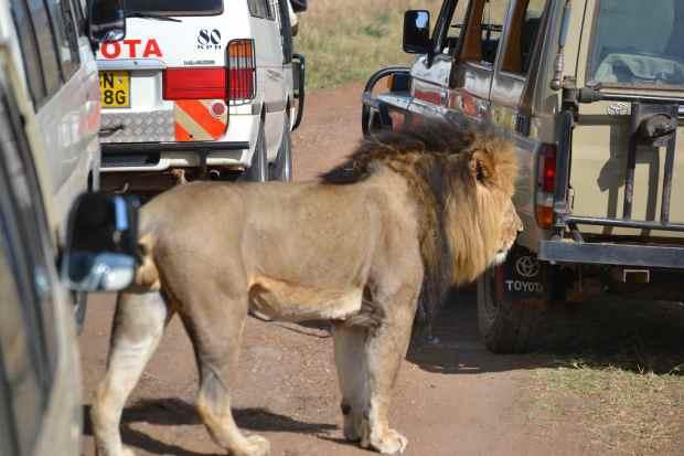 Kenyan traffic jam